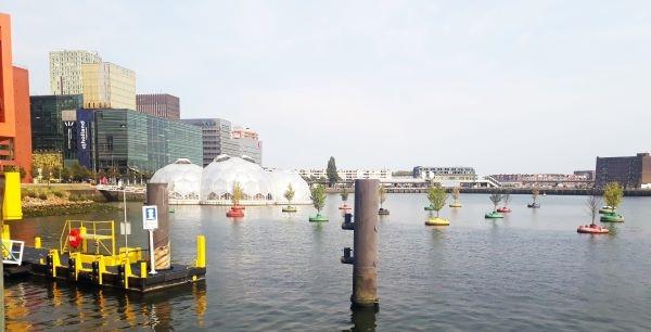 ▲레인하번(Rijnhaven)에 떠 있는 여러가지 요소들: 파빌리온, 나무, 택시승선장 ©박혜리